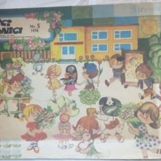 REVISTA ARICI POGONICI NR. 5/1976 (CU DEFECTELE MENTIONATE IN DESCRIERE) - Revista scolara