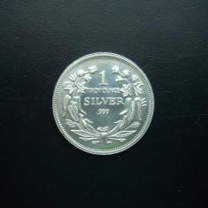 Lingou de argint - tip moneda 99, 9% de 1 troy oz (31, 5 Grame), America de Nord