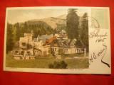 Ilustrata clasica Sinaia -Cantina , Corpul de Garda 1905 ,goarna 932,5 bani Spic