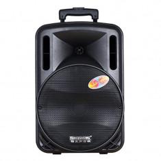 Boxa tip troler Temeisheng A12, radio FM, USB