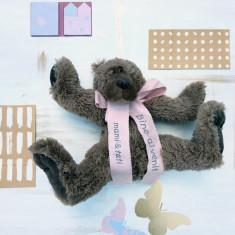 Brown Sweet Teddy- Urs plus personalizat jucarie - Jucarii plus