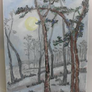 In noapte-pictura ulei pe panza;MacedonLuiza