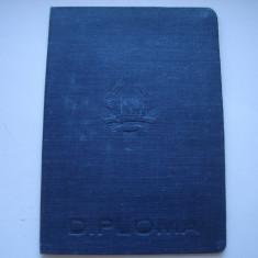 Diploma Facultatea Matematica-Fizica, Universiatea Bolyai, Cluj, 1953 - Diploma/Certificat