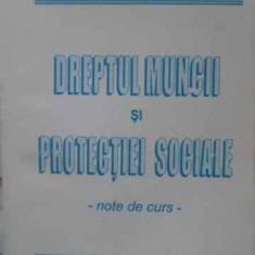 Dreptul Muncii Si Protectiei Sociale. Note De Curs - Constantin Jofa, Romeo Chelaru, 405864 - Carte Drept penal