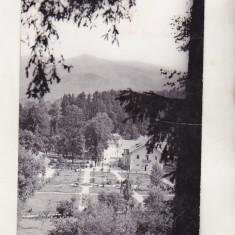 bnk cp Sangeorz Bai - Vedere din parc - uzata