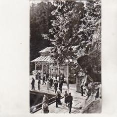 Bnk cp Slanic Moldova - Izvoarele minerale - circulata - Carte Postala Moldova dupa 1918, Printata