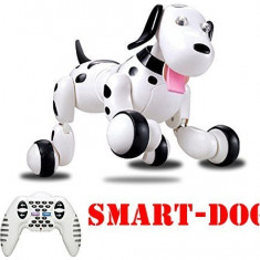 SMART DOG, CATELUL ROBOTIC INTELIGENT CU TELECOMANDA SI MULTIPLE FUNCTII.CATEL RC - Roboti de jucarie, Plastic, Unisex