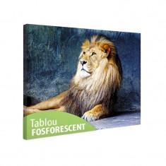 Tablou fosforescent Regele leu - Tablou canvas