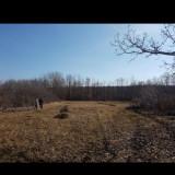 Vand Teren intravilan + casa - Teren de vanzare, 7000 mp