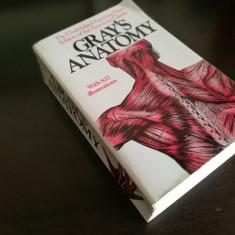 Gray's Anatomy Unabridged, Paperback - Carte in engleza