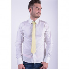 Cravata Matase Selected Examen Lime - Papion Barbati
