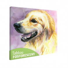 Tablou fosforescent Labrador - Tablou canvas