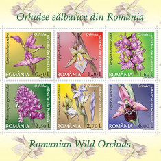 2007 - orhidee, bloc stampilat bloc neuzat - Timbre Romania