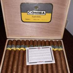 Trabucuri Cohiba