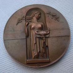 Medalie din bronz Benignitatis Humanae Finlandia Memor 61 grame anul 1935, Europa