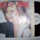 Disc vinil PAULA ABDUL - Forever your girl (produs Melodia - Rusia) - Muzica Pop