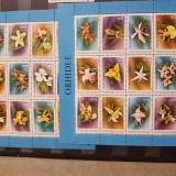 Orhidee-doua colițe - Timbre Romania, Flora, Nestampilat