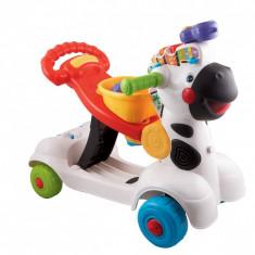 NOU! Scuter Zebra 3x1 Vtech premergator ride-on trotineta, Multicolor