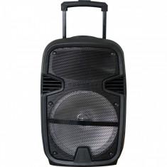 Boxa portabila Freeman Karaoke 1000, microfon, telecomanda, Bluetooth, USB, Radio FM, SD Card, Aux, Mp3 player, Negru
