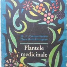 Plantele Medicinale - D. Gr. Constantinescu Elena Maria Hatieganu, 406477 - Carte Medicina alternativa