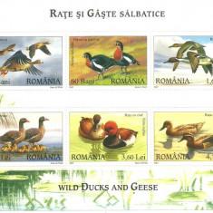 2007 - rate si gaste, bloc neuzat - Timbre Romania