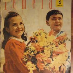 Revista FEMEIA - iunie 1963