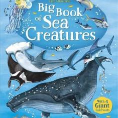 Big Book of Big Sea Creatures - Usborne book (4+)