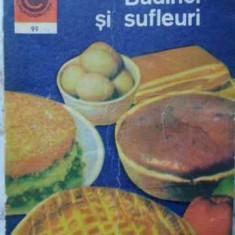Budinci Si Sufleuri - Elena Rusu, 406583 - Carte Retete culinare internationale