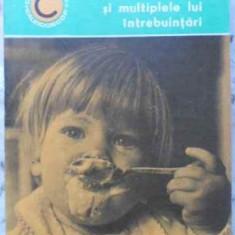 Laptele Si Multiplele Lui Intrebuintari - Ioana Savu, 406548 - Carte Retete culinare internationale