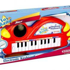 Orga Electronica Cu 22 Clape Si Lumini