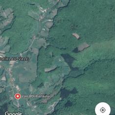 Teren Valea Dobarlaului - Teren de vanzare, 4000 mp, Teren extravilan