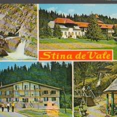 CPI (B9247) CARTE POSTALA - STANA DE VALE, MOZAIC - Carte Postala Crisana dupa 1918, Necirculata, Fotografie