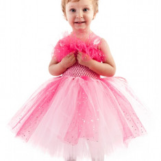 Costum tutu Printesa Rozelor 2-3 ani