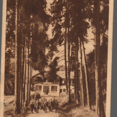CPI (B9292) CARTE POSTALA - TOPLITA. COLONIE DE COPII, RPR, 1953 - Carte Postala Transilvania dupa 1918, Circulata, Fotografie