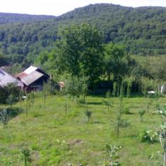 Vand (intravilan) 2 loturi de casa de 2000 m2 in Com Baiculesti, Arges - Teren de vanzare, 4000 mp, Teren intravilan