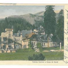 4150 - Prahova, SINAIA - old postcard - used - 1904 - Carte Postala Muntenia pana la 1904, Circulata, Printata