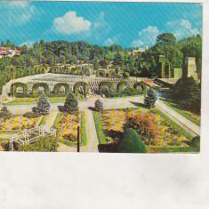 Bnk cp Timisoara - Parcul rozelor - circulata - Carte Postala Banat dupa 1918, Printata