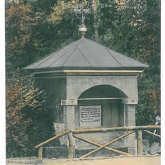4146 - Rm. VALCEA, Zavoi Park - old postcard - used - 1916 - Carte Postala Oltenia 1904-1918, Circulata, Printata