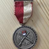 Medalie Elvetia - Feldschützen Seltisberg, Europa
