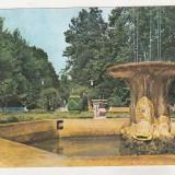 Bnk cp Buzias - Parcul - circulata - marca fixa - Carte Postala Banat dupa 1918, Printata