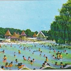 Bnk cp Oradea - Baile Felix - Strandul cu apa termala - circulata - Carte Postala Crisana dupa 1918, Printata