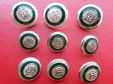 Lot 9 nasturi metalici argintiu mat+verde, heraldica