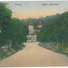 4143 - Arges, PITESTI, Trivale Park - old postcard - used - 1916 - Carte Postala Muntenia 1904-1918, Circulata, Printata