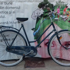Bicicleta Dama Kona EXCLUSIV, 20 inch, 28 inch, Numar viteze: 3