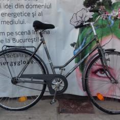 Bicicleta Dama Diadora BACHTENKIRCH, 19 inch, 28 inch, Numar viteze: 3