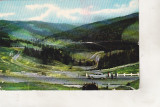 bnk cp Mestecanis - Vedere spre Valea Putnei - uzata