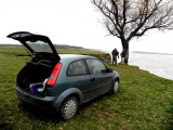 Ford Fiesta 1.3 distributie LANȚ, Benzina, Hatchback