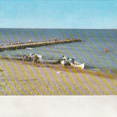 Bnk cp Eforie Sud - Pe plaja - circulata - Carte Postala Dobrogea dupa 1918, Printata