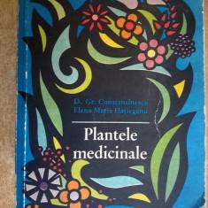 G. Constantinescu, E. Hatieganu-Buruiana -Plantele medicinale