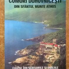 Comori duhovnicesti din Sfantul Munte Athos culese din scrisorile si omiliile Avvei Efrem